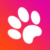 Game for cats! App Icon