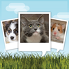 My Talking Pet App Icon