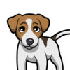 JackMoji - Jack Russell Emoji and Stickers App Icon