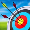 Arrow Master: Archery Game image