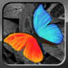 PhotoWizard-Photo Editor Lite App Icon